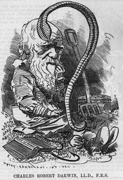 caricatura-darwin-7